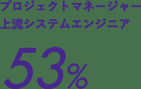 プロジェクトマネージャー上流システムエンジニア53%